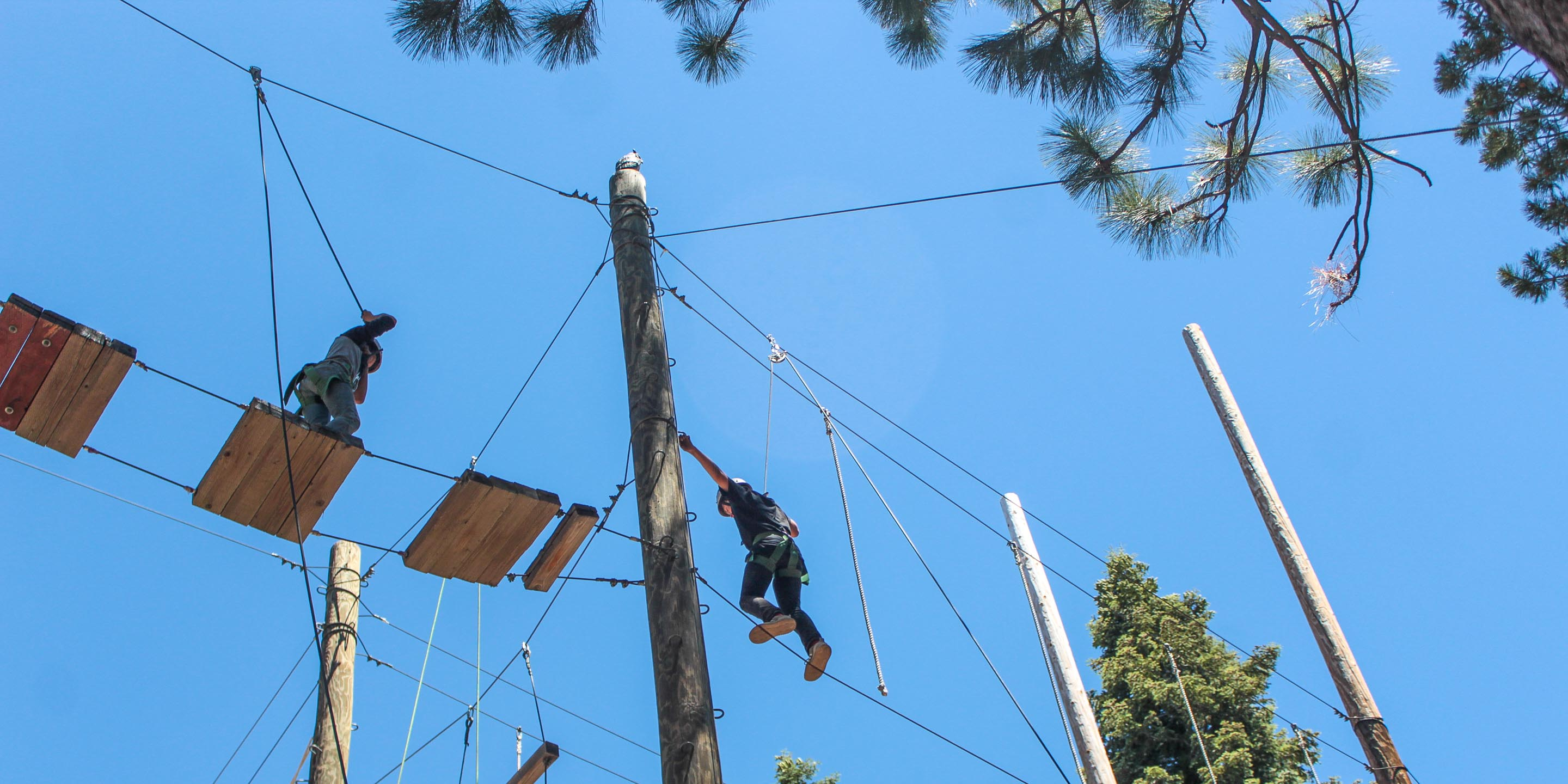 Campers on high ropes course